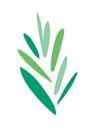 reconstructing leaves logo web quality